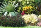 Bellevue Heights Bali style landscaping 6old