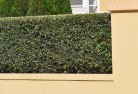 Bellevue Heights Hard landscaping surfaces 8