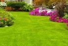 Bellevue Heights Lawn and turf 35